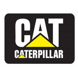Caterpillar Early Flash Files